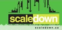Scaledown foundation company
